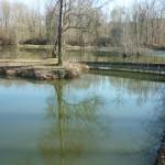 Plan d'eau de Vermeil