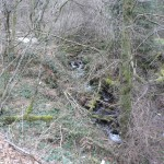 Ruisseau des Bories avant travaux
