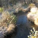 Ruisseau de Rochefort