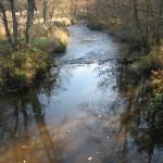 Un joli ruisseau