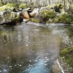 La Triouzoune en aval du Barrage