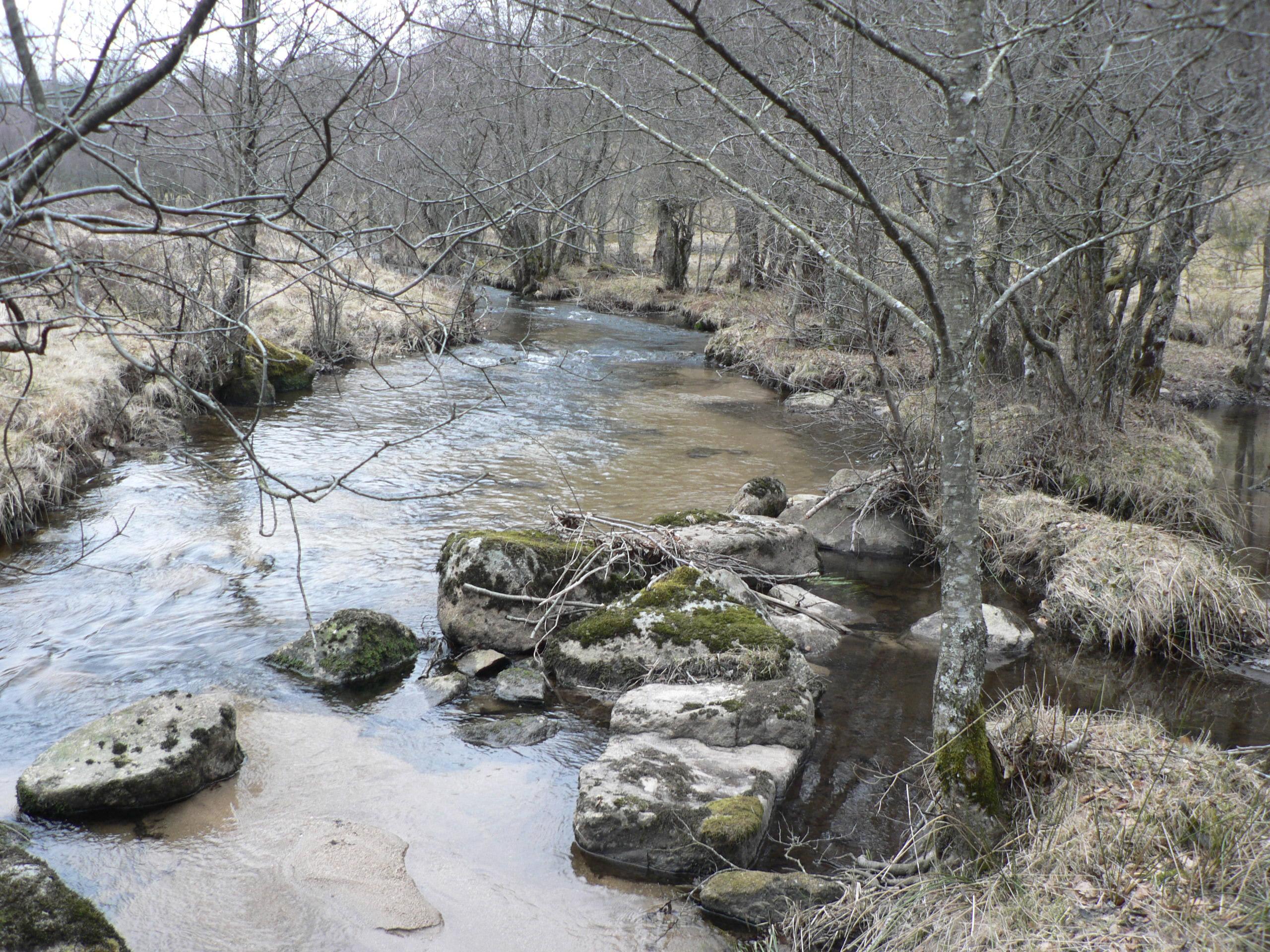 Corrèze de Pradine (11)